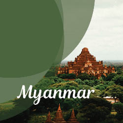 The Best Of Burma